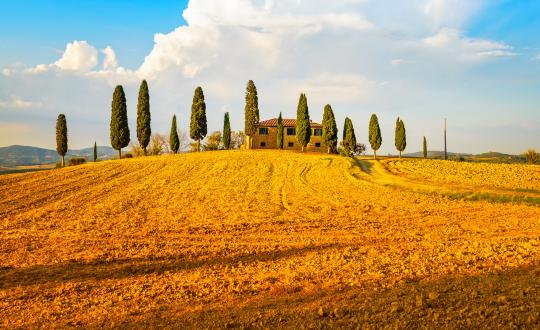 De mooiste agriturismo's in Siena