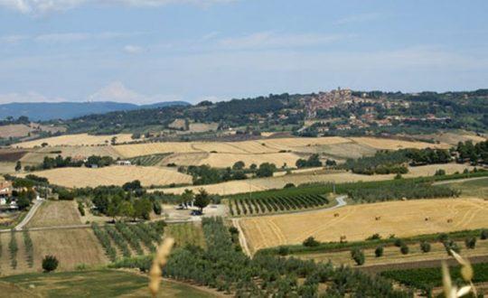 Agriturismo Eucaliptus - Toscana.nl