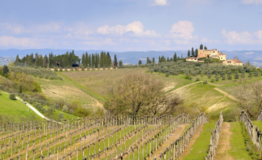 Op vakantie in Toscane! 5 topbestemmingen!