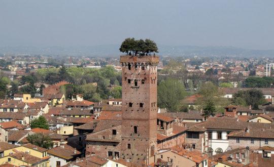 3 bezienswaardigheden in Lucca!