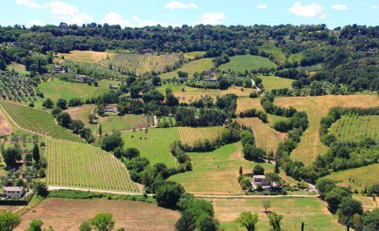 Reis door Toscane en Umbrië