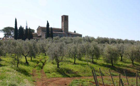Naar Toscane in de herfstvakantie