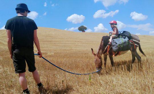 Wandelvakanties en ezeltochten in Toscane