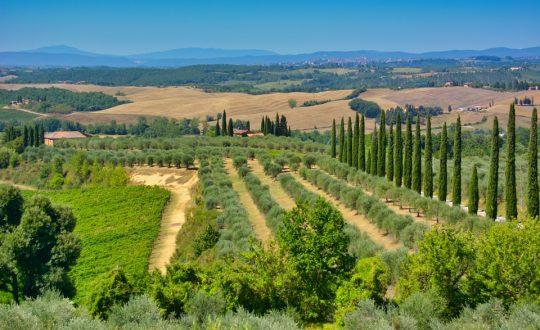 5 leuke ideeën om met je vakantiefoto's uit Toscane te doen